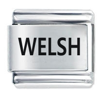 Picture of Welsh ETCHED Italian Charm